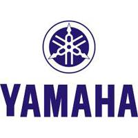 UTV - Complete Suspension Systems with Shocks - Yamaha