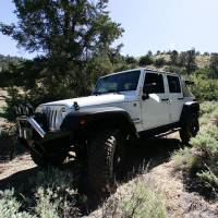 Off Road - Jeep / Truck / SUV - Shocks - Lifted Suspension Shocks